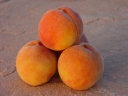 Palisade Peaches-2 Dozen
